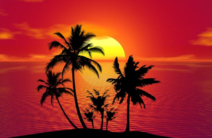 Tropical House Music
